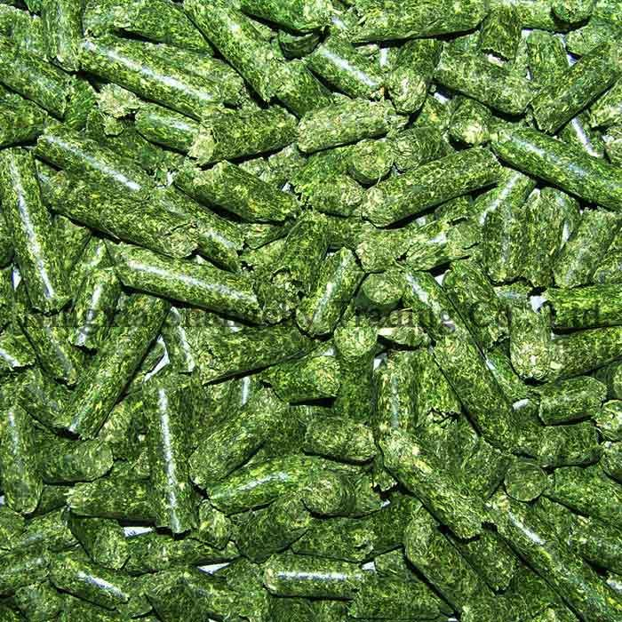 Buy Alfalfa Pellets Online ,Dehydrated Alfalfa Meal Pellets for sale