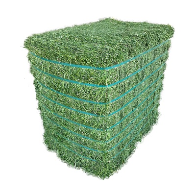 Quality Alfalfa Hay In Bales , Alfalfa Hay For Sale Online