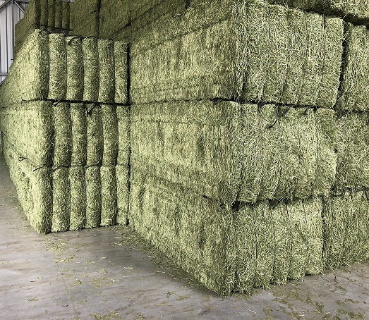 Dehydrated Alfalfa For Sale ,Buy Quality Dehydrated Alfalfa hay